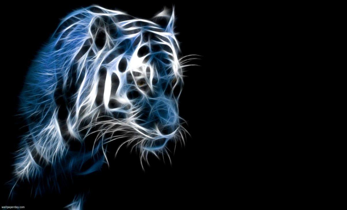 Black Tiger Wallpaper Hd 1080p Fitrini S Wallpaper