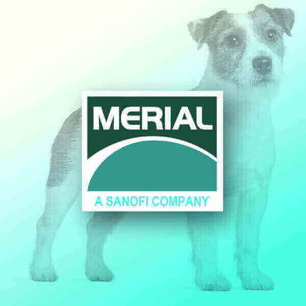 merial animal health products merial products veterinary contact boehringer ingelheim animal health merial us nexus purevax People also ask Where is Merial located? Who bought Merial? What is Recombitek? What does Merial mean?