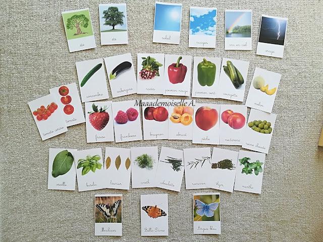 || Table des saisons : L'été - Cartes de nomenclature saisons, météo, légumes, fruits, aromates, papillons