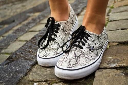 snake vans sneakers convers