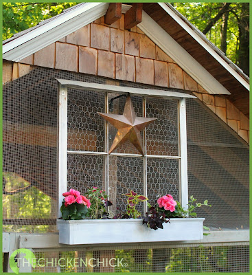 Chicken coop window box, via www.The-Chicken-Chick.com