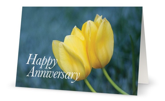Happy Anniversary Flower Ideas Traditional Flowers Of Wedding Anniversary