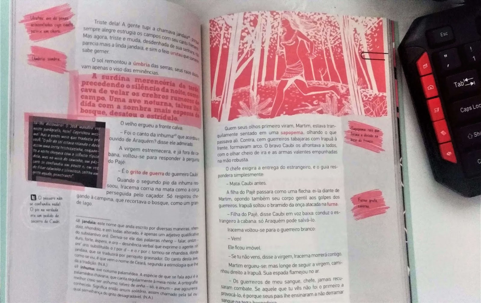 Edição da editora Panda Books tem notas e ilustrações que facilitam a leitura.
