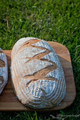 jak zrobić chleb, bochenek, pieczenia chleba
