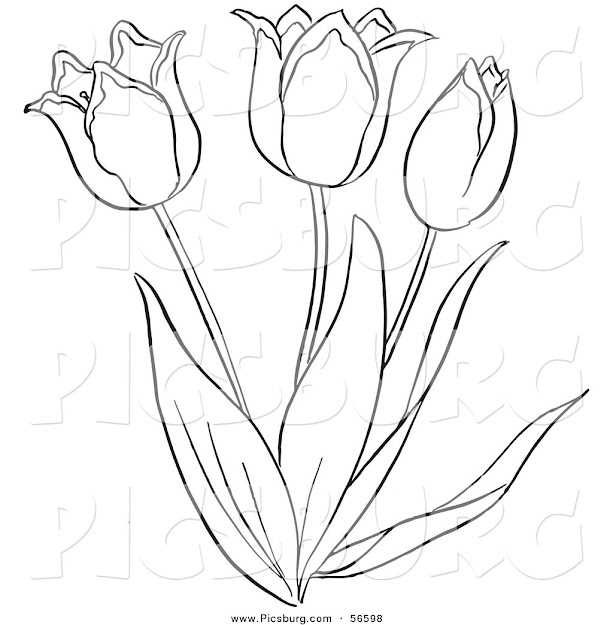 Tulip Outline Coloring Coloring Pages Throughout Incredible Tulip Coloring  Pages
