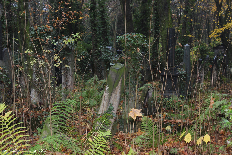 Ein Besuch auf dem Jüdischen Friedhof in Berlin Weissensee von Kebo vom Südtiroler Blog kebo homing, Fotografie, Photography