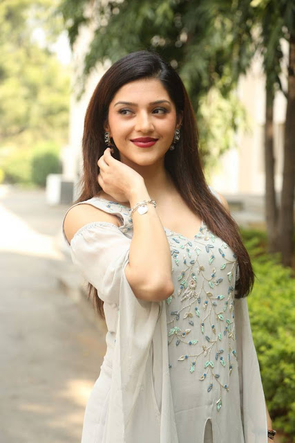 Mehreen Kaur Stills At Jawaan Movie Pre Release Event