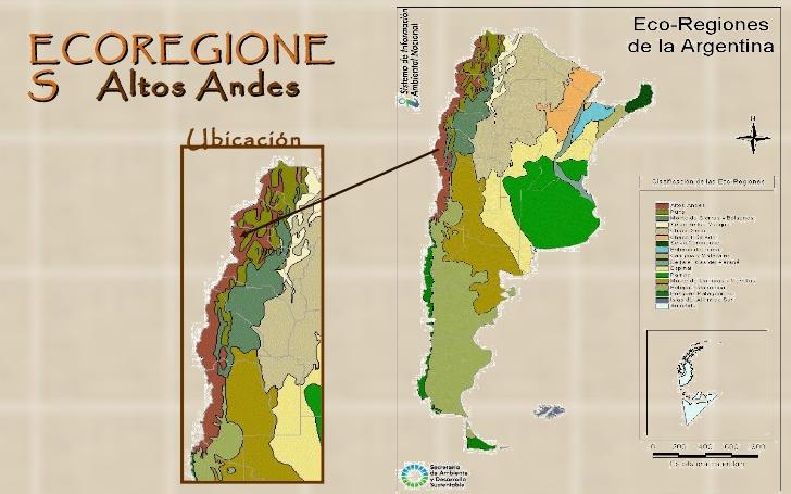 Argentina Nativa Altos Andes Y Puna