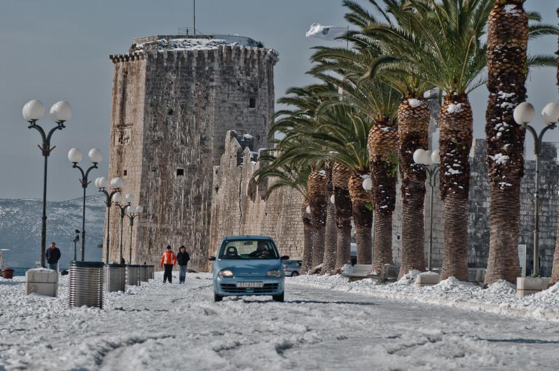 Snow+Palm+Trees+Croatia.jpg