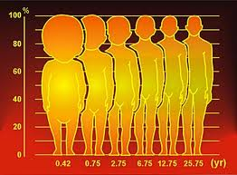 Life's Many Phases: Height increase-Is it even possible at