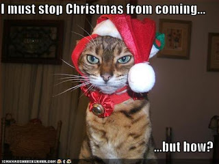 Christmas In July Cat Meme.Humane Society Silicon Valley Blog Twas A Few Days Before