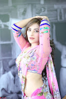 Actress Angela Krislinzki in Pink Saree Blouse Exclusive Pics March 2017 ~  067.JPG