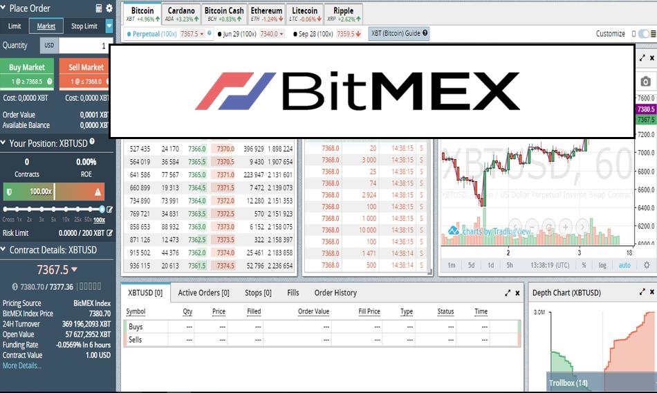 Bitmex Cross Vs 1x