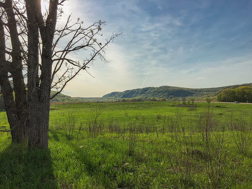 Baraboo Hills beyond on the Merrimac Segment of the Ice Age Trail
