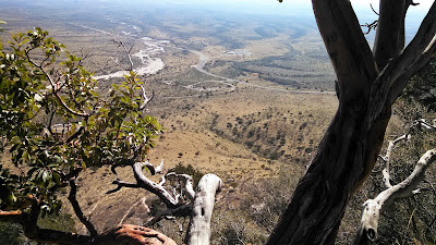 A view from the Guadalupe Mountain Peak trail.
