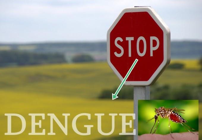 डेंगू से कैसे बचें। सफाई ही नहीं, इम्युनिटी पर भी दें ध्यान
