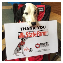 Thank you the Keep Kids Fire Safe Foundation's Corporate Sponsor, State Farm!