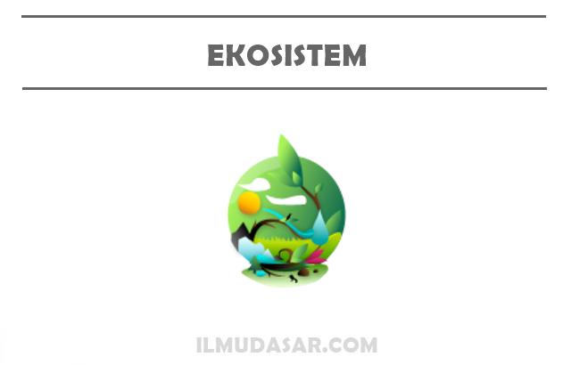 Pengertian Ekosistem, Komponen Ekosistem, Jenis Ekosistem