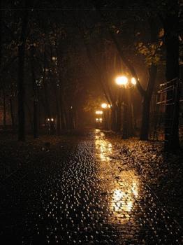Ночь, дождь, фонари, дорога...