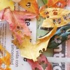 http://www.patypeando.com/2016/12/empaquetado-bonito-con-hojas-secas.html