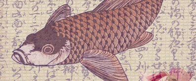 Heian period japan koi carp legends for What does carp mean