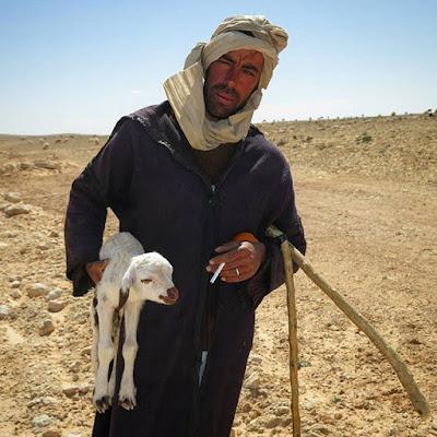 Pastor de ovejas en el desierto de Túnez