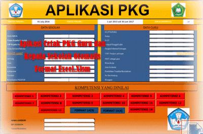 Contoh Aplikasi PKG Tingkat TK SD SMP SMA Format Excel.Xlsm