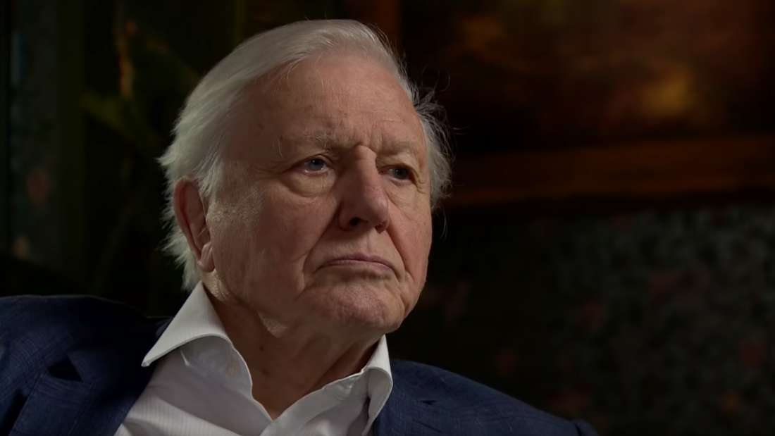 Population Growth Has To Slow Down If We Want To Save The Planet, Says David Attenborough