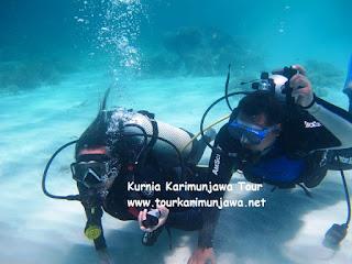diving di cemara besar karimunjawa