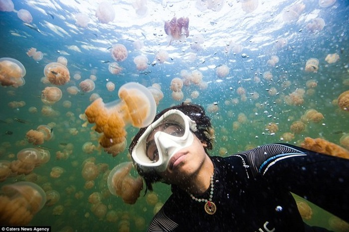Selfie of the Artist as a Woman Diving with Jellyfish