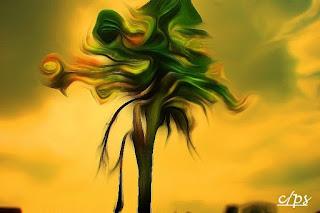 Fauna, Flora, Tiere, Vögel, Fische, Insekten, Blumen, Bäume, Berge, Meer, Ozean, Natur, Sonne, Mond, animals, birds, fish, insects, flowers, trees, mountains