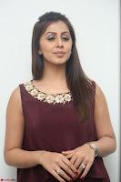 Nikki Galrani in a Brown Shining Sleeveless Gown at Nakshatram music launch ~  Exclusive 080.JPG