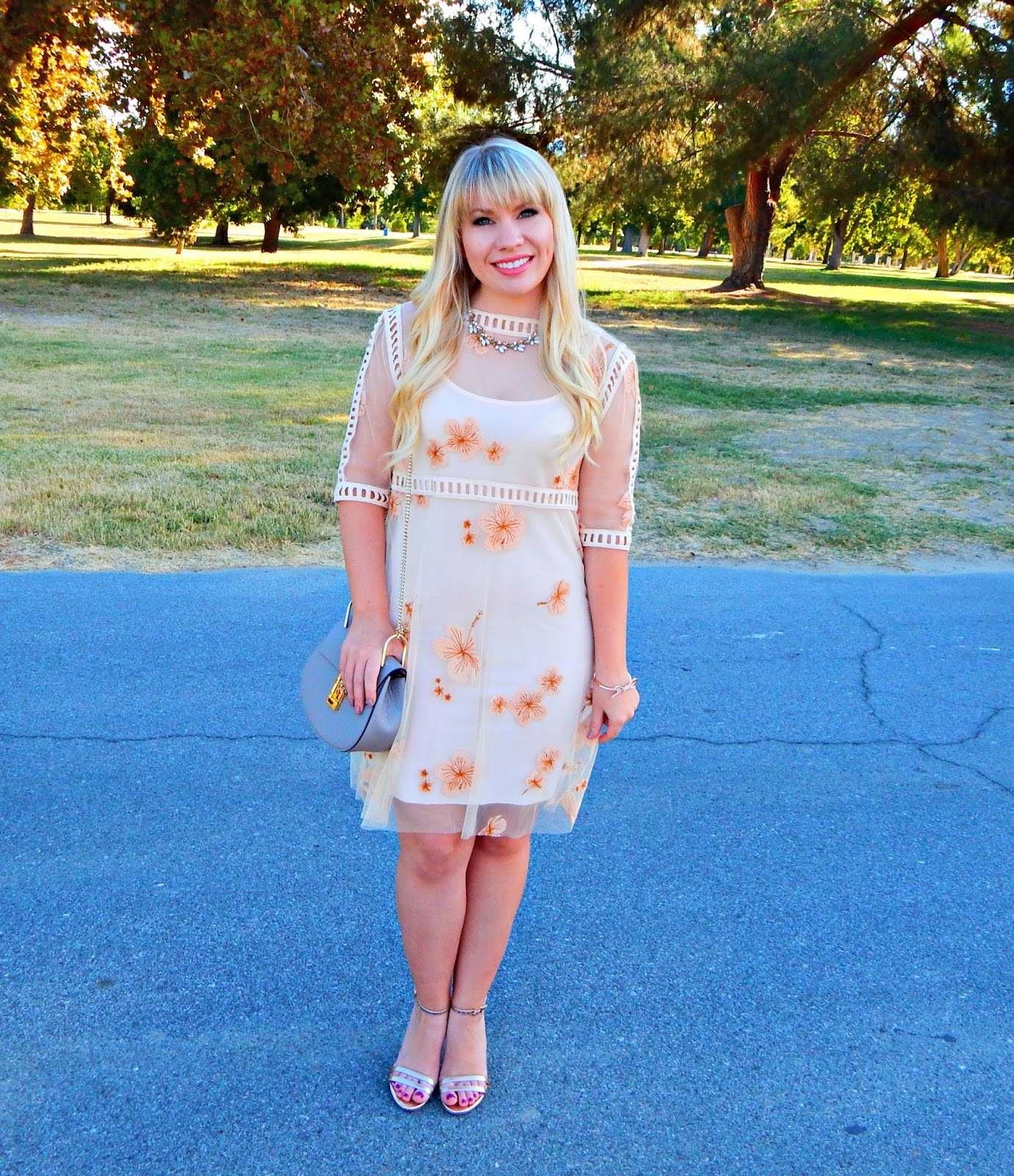 Embroidered Peach Dress