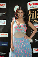 Amyra Dastur in Flower Print Choli Transparent Chunni at IIFA Utsavam Awards027.JPG