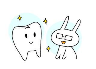 ©さんがつの歯科矯正を始めます 2018年前半の写真