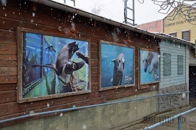 Unterwasserwelt Erlebnis-Zoo Hannover