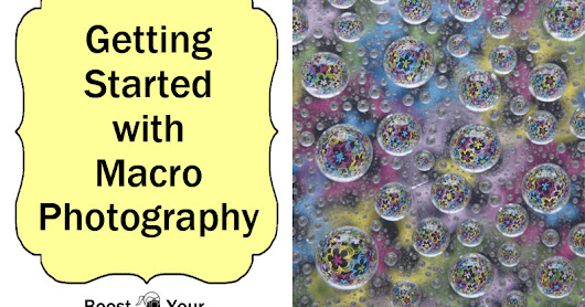 Getting Started with Macro Photography