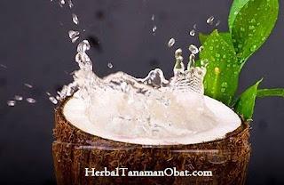air kelapa, manfaat air kelapa untuk ibu hamil, manfaat air kelapa bagi kecantikan, manfaat air kelapa bagi ibu hamil, manfaat air kelapa pada ibu hamil, manfaat air kelapa bagi kesehatan tubuh, manfaat air kelapa untuk kesehatan