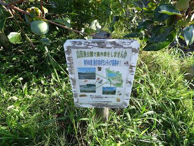 山田家公園 農作業ボランティア募集中