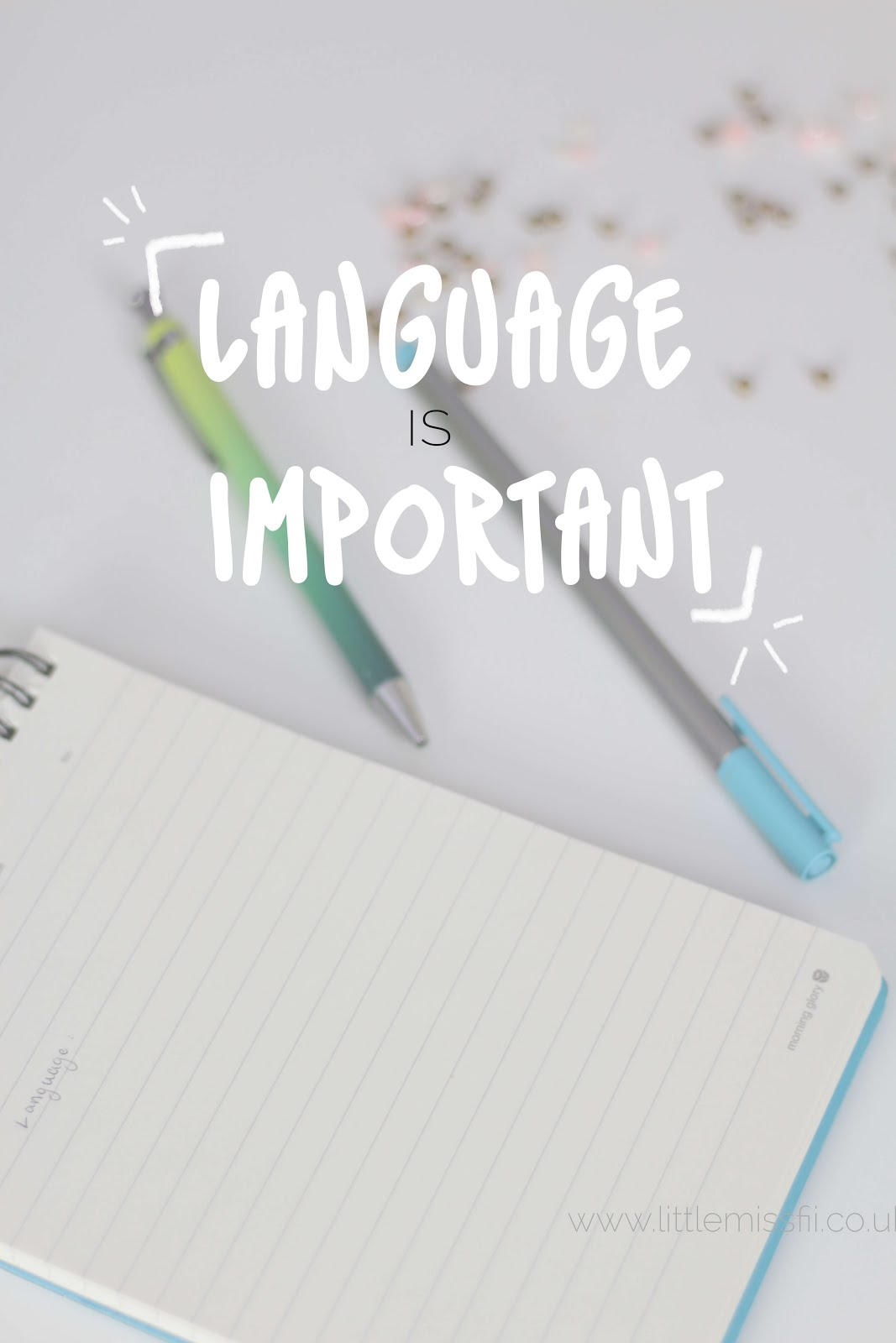 language used speech important politics