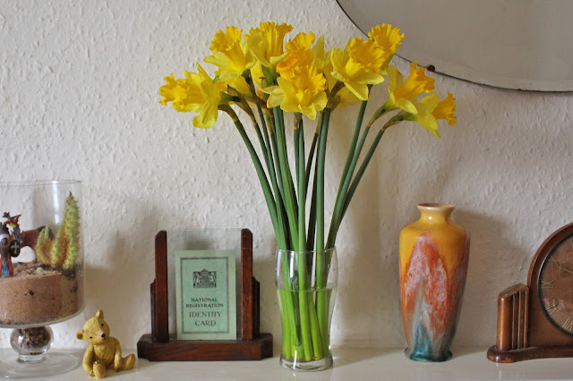 Wendy's Week - Photography & Films - Daffodils