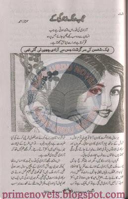 Ajab rung zindagi ke novel by Mumtaz Ahmed pdf