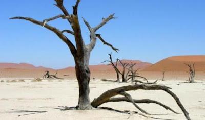 Ternyata Perubahan Iklim Sudah Dilawan Sejak Mesir Kuno
