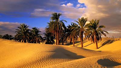 Sahara trasformato in deserto dalla mano dell'uomo
