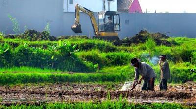 Alih fungsi lahan sawah produktif masif di Bekasi