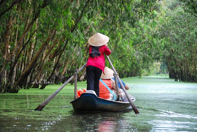 Tra Su Forest rowing boat - Đò chèo Rừng Tràm Trà Sư