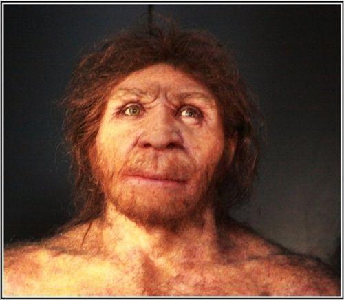 Homo Antecessor de Atapuerca (Burgos)