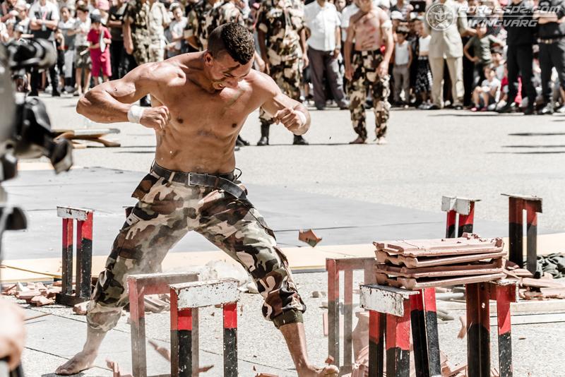 موسوعة الصور الرائعة للقوات الخاصة الجزائرية - صفحة 62 IMG_5631