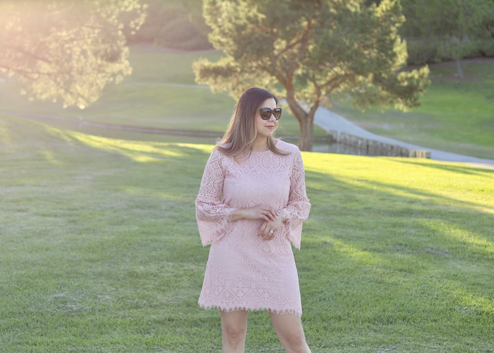 Blush Delicate Lace Outfit