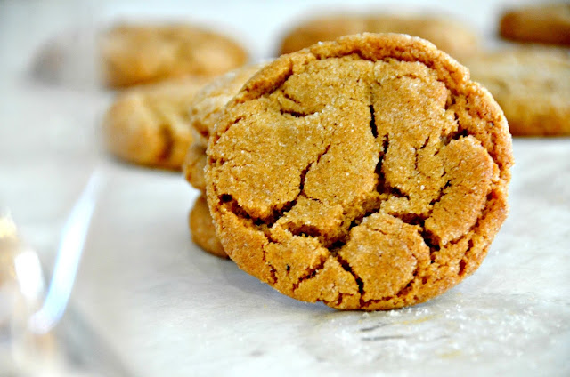 Apple Cider Molasses Cookie | Cheesy Pennies